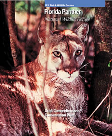 Florida Panther Conservation Plan