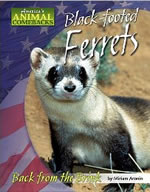 Black-Footed Ferret Book